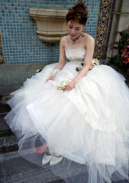 ロアラブッシュでの結婚式、披露宴のためのウェディングドレス